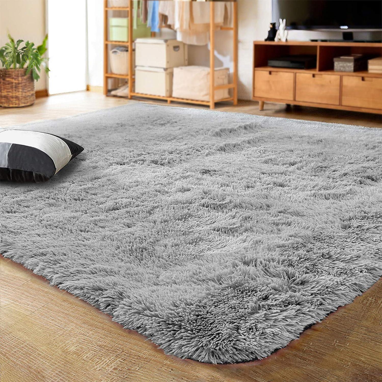 Lochas Ultra Soft Indoor Modern, Living Room Carpet